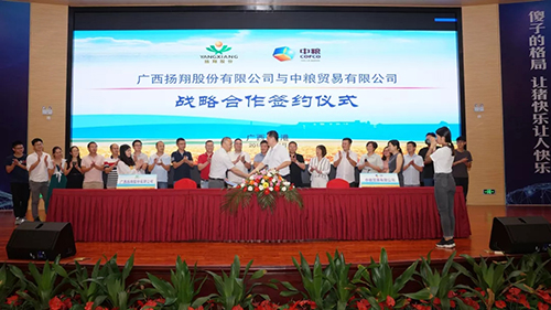 Yang xiang signed a strategic cooperation agreement with cofco trading co., LTD