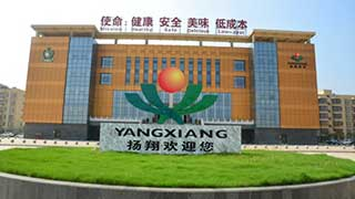 Yang xiang shares through the